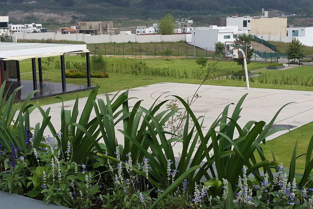 Los Robles Residencial 3